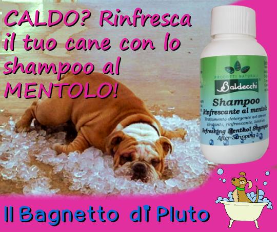 2017-08-01 Shampoo Mentolo